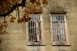 Aslyum windows